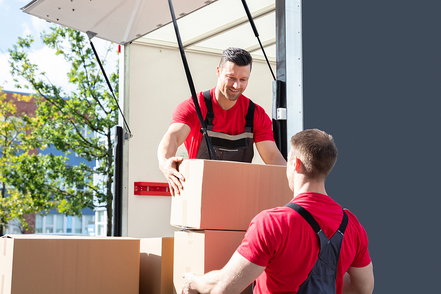 Two men working in a corporate removals company